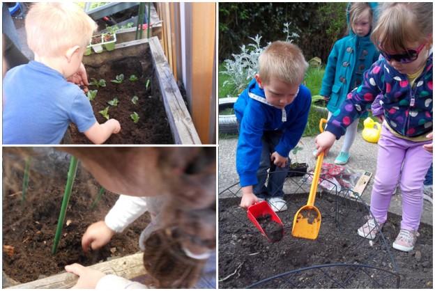 preschool activities, gardening